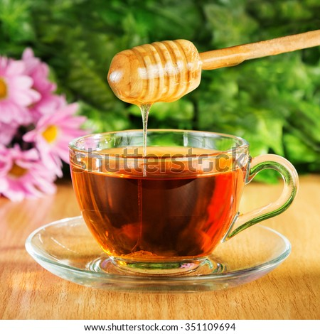 Useful tea with honey on a background of nature - stock photo