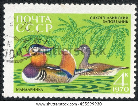 "USSR - CIRCA 1970: A post stamp printed in USSR shows a series of images ""Waterfowl"", circa 1970 - stock photo"