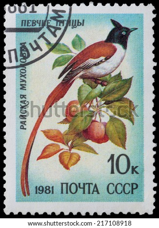 USSR - CIRCA 1981: a post stamp printed in USSR, shows the bird Paradise Flycatcher, songbirds, CIRCA 1981 - stock photo