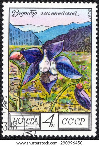 "USSR - CIRCA 1976: A postage stamp printed in the USSR shows a series of images ""Garden plants"", circa 1976"