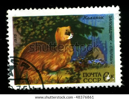 USSR - CIRCA 1975: A postage stamp printed in the USSR shows image life of animals, Columns, circa 1975