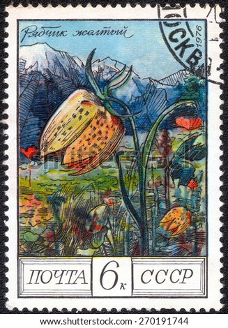 "USSR - CIRCA 1976: A Postage Stamp series of images ""Garden Flowers"", circa 1976 - stock photo"
