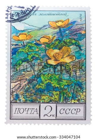 """USSR - CIRCA 1976: A Postage Stamp Shows Image of a Golden Pasque Flower with the Designation """"Pulsatilla Aurea"""" - stock photo"""
