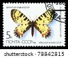 USSR - CIRCA 1986: A stamp is printed in USSR, shows the rare type of butterfly, circa 1986 - stock photo