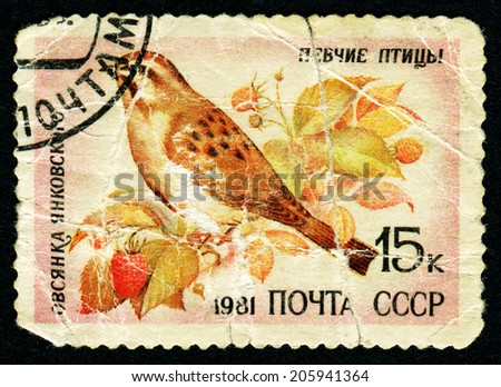 USSR - CIRCA 1981: A stamp printed by USSR shows bird, series animals, circa 1981 - stock photo