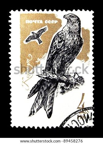 """USSR - CIRCA 1965: A stamp printed in the USSR (Russia) shows Birds of  Prey with the inscription """"Red Kite(Milvus milvus)"""" from the series """"Birds of Prey"""", circa 1965 - stock photo"""