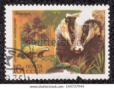 USSR - CIRCA 1975: A stamp printed in the USSR, shows a badger, circa 1975