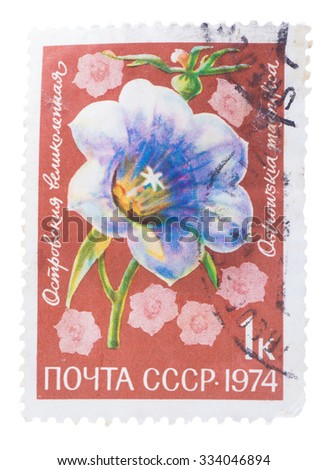 USSR - CIRCA 1974: A stamp printed in the USSR, shows a flora life, the flower, circa 1974 - stock photo