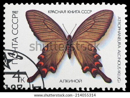 USSR - CIRCA 1987: A stamp printed in the USSR shows butterfly Alcinous, series, circa 1987 - stock photo