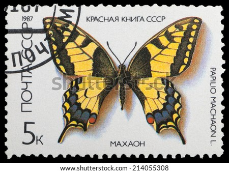 USSR - CIRCA 1987: A stamp printed in the USSR shows butterfly Swallowtai, series, circa 1987 - stock photo