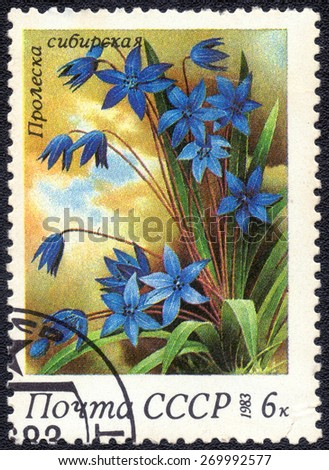 "USSR - CIRCA 1983: A stamp printed in USSR from the ""Russian plant bogs ""  circa 1983"