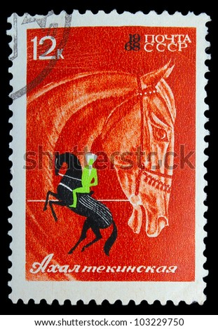 USSR - CIRCA 1968: A stamp printed in USSR, horseback riding, equestrian sport, Akhal-Teke horses, circa 1968 - stock photo
