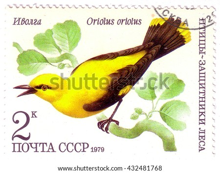 "USSR - CIRCA 1979: A stamp printed in USSR (Russia) shows a bird Oriolus oriolus with the inscription and name of series ""Birds - the defenders of the forest"", circa 1979 - stock photo"