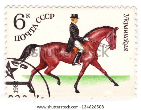 USSR - CIRCA 1982: A stamp printed in USSR shows a Donskaya horse, series horse breed in a equestrian sport, circa 1982 - stock photo