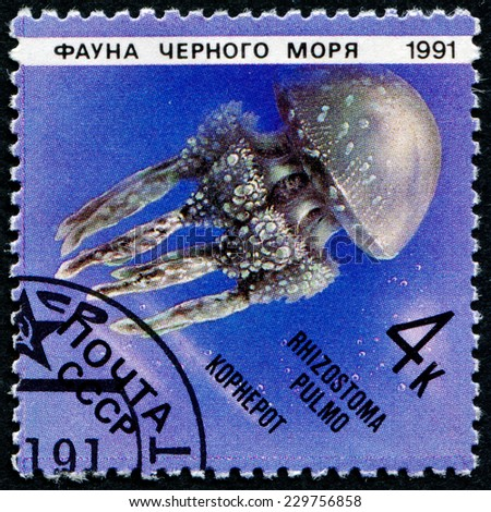 USSR - CIRCA 1991: A Stamp printed in USSR shows an image of Rhizostoma pulmo, circa 1991. Known as the Lung of the Sea, it is the largest jellyfish in the Mediterranean.