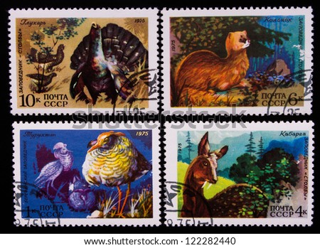 USSR - CIRCA 1975: A stamp printed in USSR shows animals of different kinds, circa 1975. - stock photo