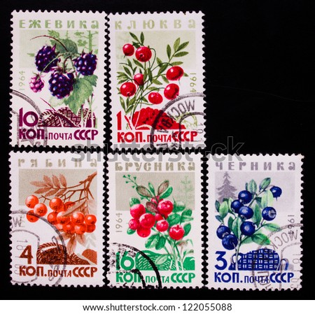 USSR- CIRCA 1961-1964: A stamp printed in USSR shows berries of different kinds, circa 1961-1964. - stock photo
