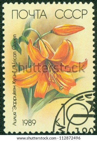 USSR - CIRCA 1989: a stamp printed in USSR shows flower lilium African Quenn, circa 1989