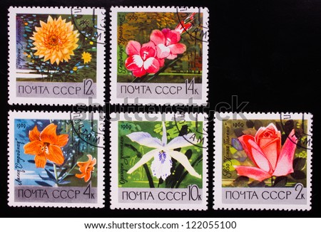 USSR - CIRCA 1969: A stamp printed in USSR shows flowers of different kinds, circa 1969. - stock photo