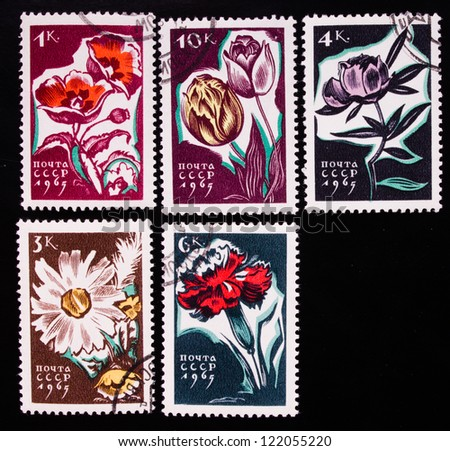 USSR - CIRCA 1965: A stamp printed in USSR shows flowers of different kinds, circa 1965. - stock photo