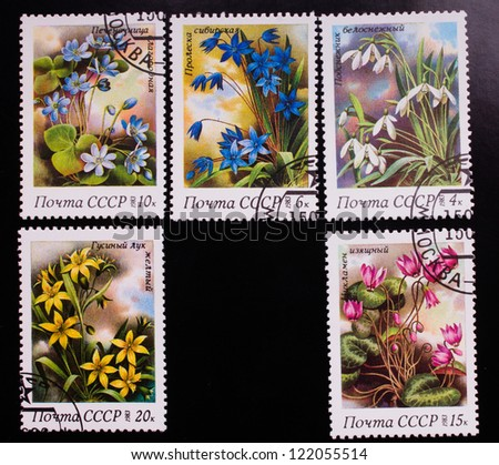 USSR - CIRCA 1983 : A stamp printed in USSR shows flowers of different kinds, circa 1983. - stock photo