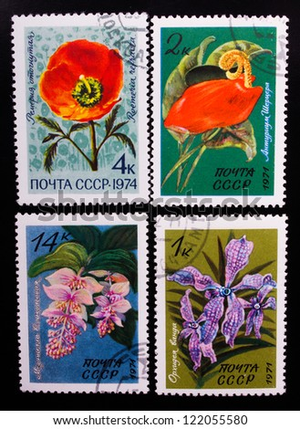 USSR - CIRCA 1971-1974: A stamp printed in USSR shows flowers of different kinds, circa 1971-1974. - stock photo