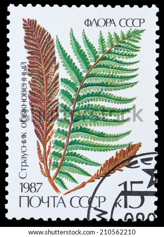 USSR - CIRCA 1987: A stamp printed in USSR shows the Strausnik ordinary, circa 1987 - stock photo