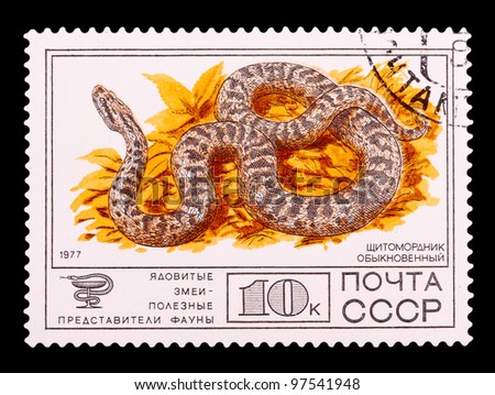 USSR - CIRCA 1977: The postal stamp printed in USSR shows a Venomous snakes useful for medicinal purposes, Gloydius, circa 1977 - stock photo