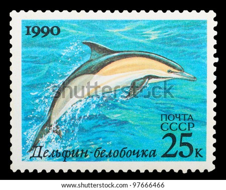 USSR - CIRCA 1990: The postal stamp printed in USSR shows dolphin, series, circa 1990