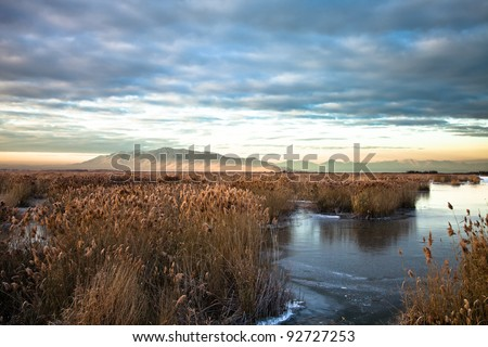 Utah Lake Marsh with Mountain in the Background