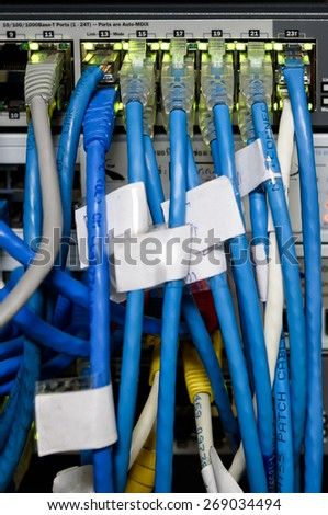 UTP Cat5e Cable on Network switch close up