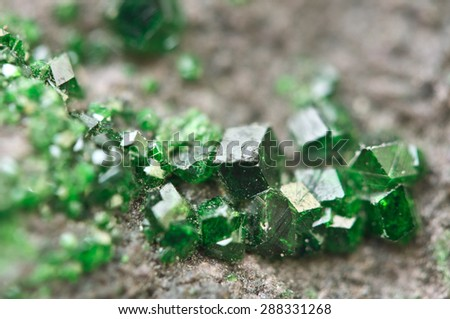 Uvarovite is a chromium-bearing garnet group species with the formula: Ca3Cr2(SiO4)3. Macro. Background for successful Your projects  - stock photo