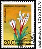 UZBEKISTAN - CIRCA 1993: a stamp printed in Uzbekistan shows Autumn Crocus, Colchicum Kesselringii, Flower, circa 1993 - stock photo