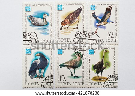 UZHGOROD, UKRAINE - CIRCA MAY, 2016: Collection of postage stamps printed in USSR shows birds from XVIII international ornithological congress (IOC), circa 1982 - stock photo