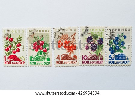 UZHGOROD, UKRAINE - CIRCA MAY, 2016: Collection of postage stamps printed in USSR shows different types forest berry plants, circa 1964 - stock photo
