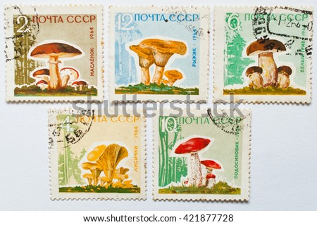 UZHGOROD, UKRAINE - CIRCA MAY, 2016: Collection of postage stamps printed in USSR, shows mushrooms series, circa 1964 - stock photo