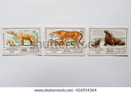 UZHGOROD, UKRAINE - CIRCA MAY, 2016: Collection of postage stamps printed in USSR shows protected mammals fauna animals, circa 1977 - stock photo