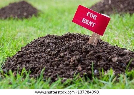 Vacant property (molehill) - For Rent - stock photo