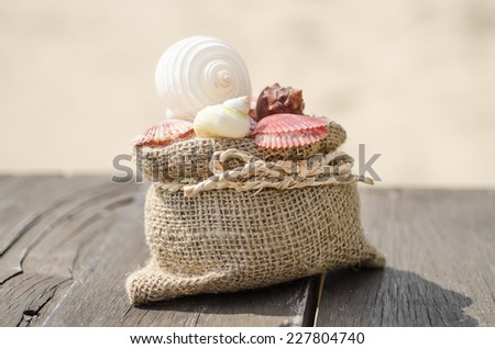Vacation memories from the sea. Shells on wood background for postcard or Poster - stock photo
