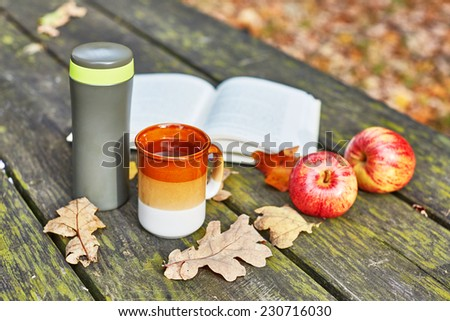 Vaccuum flask with hot tea, mug, apples and book on a picnic table on a fall day - stock photo