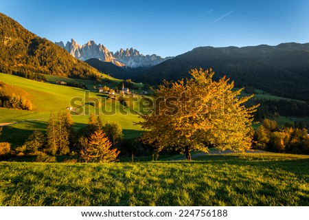 Val di Funes, Italy, autumn lanscape with Dolomites Olde Alps in background and orange tree in foreground. Santa Maddalena Church - stock photo