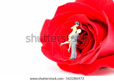 Valentine concept : Miniature of a women and a man in love with red rose in white background, copyspace, couple in love and pre-wedding background Valentine's Day