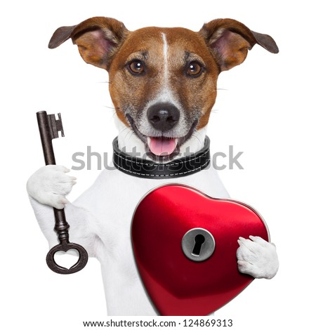 valentine dog ,unlock my heart with a key