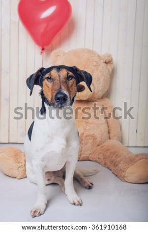 valentine dog with a teddy bear and a red balloon