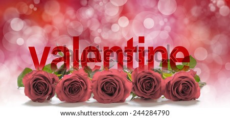Valentine Roses Header -  Five muted red rose heads laid in a neat row with the word 'valentine' merging into the roses on a red bokeh background and plenty of copy space above - stock photo