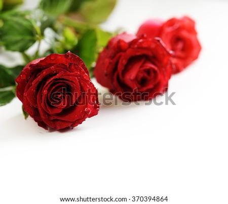 Valentine roses over white background - stock photo