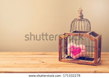 Valentine's day background with bird cage and heart shape - stock photo