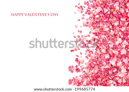 Valentine's day card design with pink rose petals - stock photo