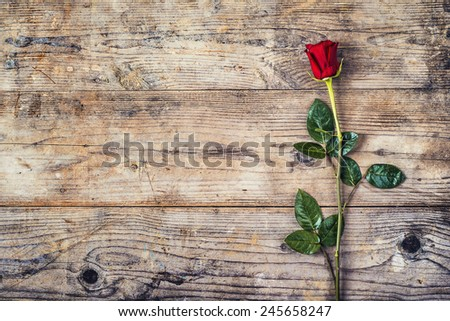 Valentine�´s day composition of a red rose lying on a floor. Studio shot on a wooden background.