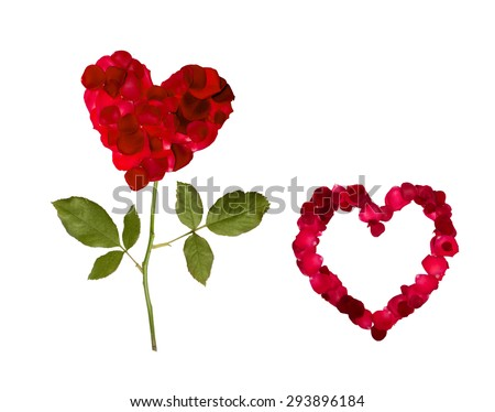 Valentine's Day heart of rose petals isolated  white background - stock photo